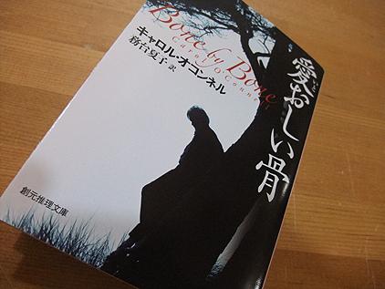 ミステリィ小説