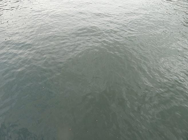ミラボー橋の上から