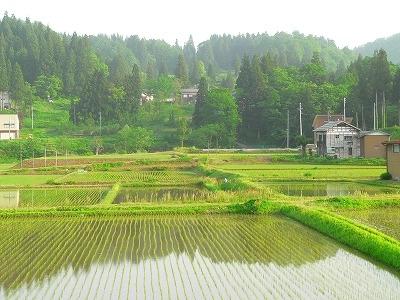 里地の田園風景