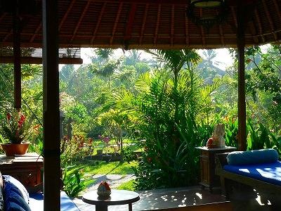 朝日に輝くビラの庭