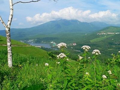 車山から白樺湖を望む
