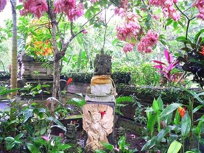 庭のバージンツリー