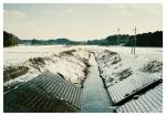 雪の清明川