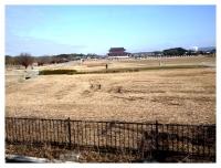 車窓から平城宮跡
