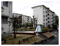 鶴舞団地内の公園