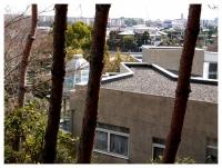 松伯美術館から鶴舞団地を望む