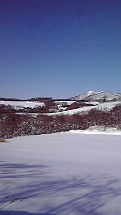 2012122910320000.jpg