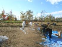 北海道 帯広 蕎麦 畑仕事