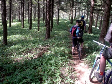 Paul's Bike Trip