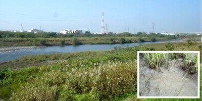 555nat 多摩川の水と底質調査ネットワーク「放射性セシウム動態調査の基本を学ぶ会」 (1)