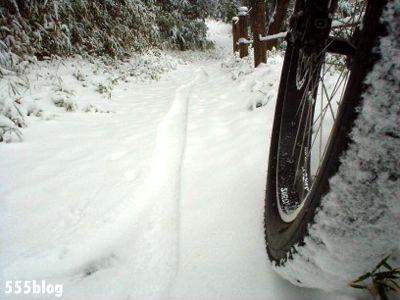 555nat ホロホロ日記 世田谷トレイル 2014年2月8日の新雪ライド(3)