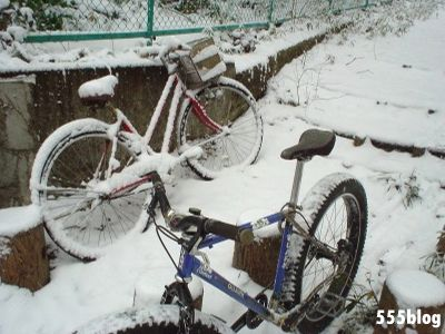 555nat ホロホロ日記 世田谷トレイル 2014年2月8日の新雪ライド(7)