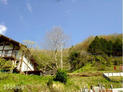 555nat ホロホロ日記 自転車テストライド Surly 2014.4.23(6)