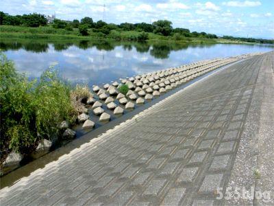 ホロホロ日記 555nat.com たまあじさいの会 リネンによる河川水放射線調査 2015.6.20 設置(4)