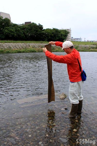 ホロホロ日記 555nat.com たまあじさいの会 リネンによる河川水放射線調査 2015.6.21 翌日一部回収(1)