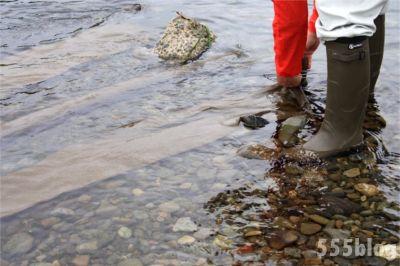 ホロホロ日記 555nat.com たまあじさいの会 リネンによる河川水放射線調査 2015.6.21 翌日一部回収(2)