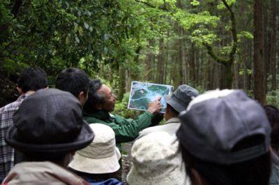 ホロホロ日記 555nat.com たまあじさいの会 日の出の森・守る会