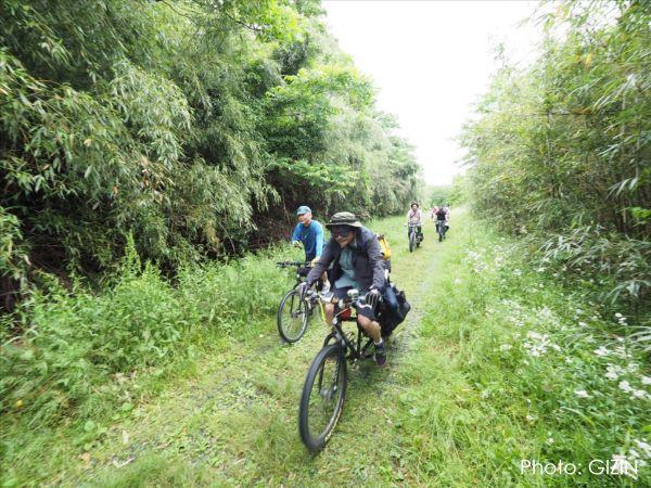 ホロホロ日記 555nat.com JK2017 Longtail bike Meeting EAST 彩湖 bike ride cycling saitama 2017.5.14 ロングテールバイク ミーティング(6)