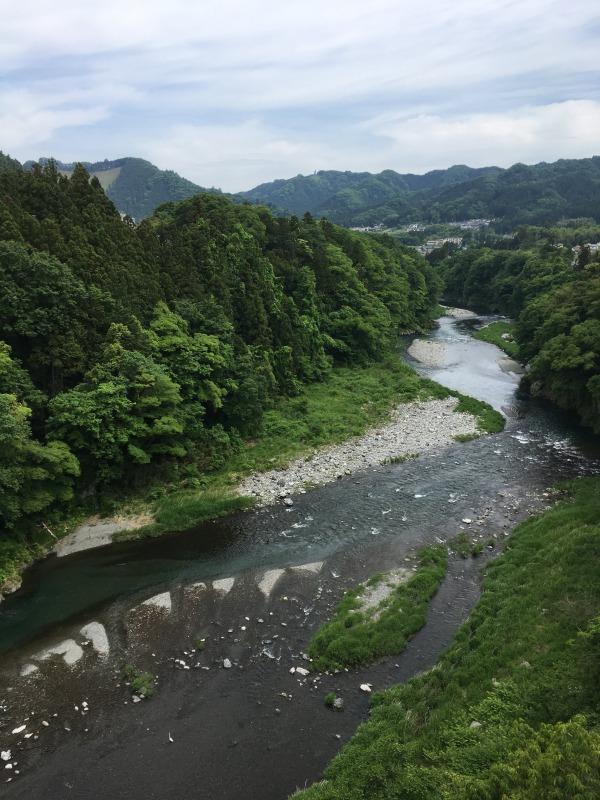 ホロホロ日記 555nat.com 555blog たまあじさいの会 2018年総会 青梅 日向和田  神代橋