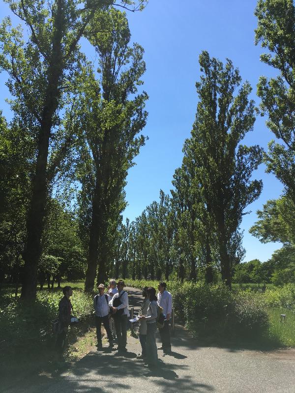 ホロホロ日記 555nat.com 555blog 水元公園 放射能調査 ホットスポット ワークショップ HIT 2018