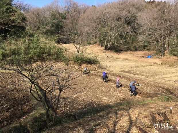 週末シティ・ファーマー Now tenki ノーテンキ 農に学ぶ 無農薬無肥料栽培 自然農 田起こし 2020.2.22 ホロホロ日記