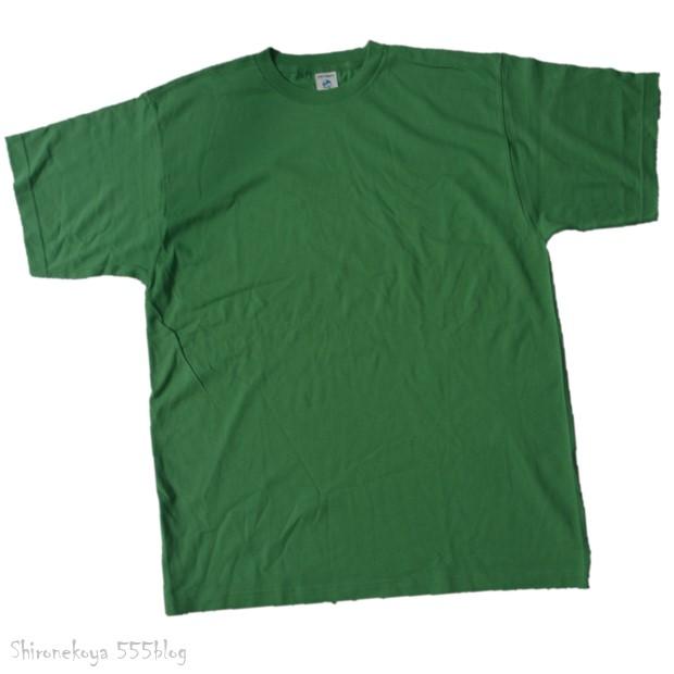 白猫屋 Tシャツ期間限定販売 L パタゴニア オーガニックコットン 555blog 555nat ホロホロ日記