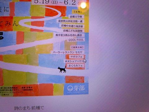 CIMG9979.jpg