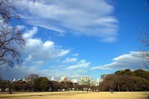 2011/1/20大寒3