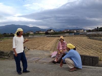 2013_10稲刈b