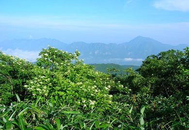 飯縄山頂から高妻・戸隠連峰170731