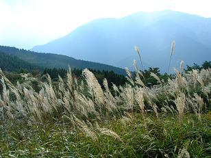 葛城山から金剛山20051030
