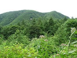 浅間隠山へ180729