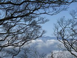 尾鈴山稜線200315