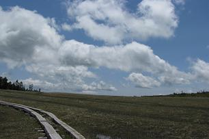 田代山湿原200614