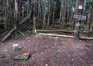 和名倉山山頂200923