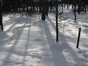 小屋の積雪状況210111