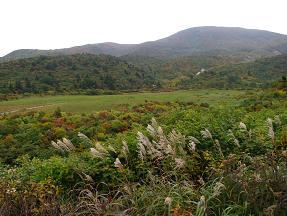 栗駒山湿原210922