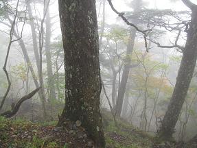 山伏登山道211010