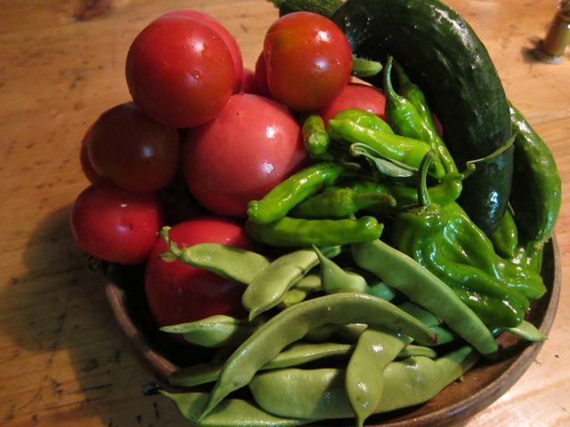 夏野菜4.jpg
