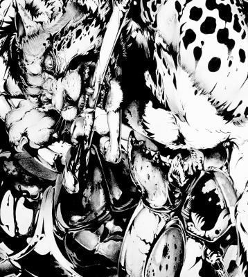 猫将軍の画像 p1_29