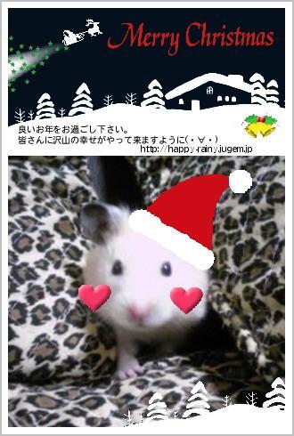2009クリスマスカード