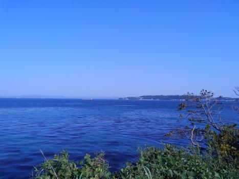 猿島からの景色