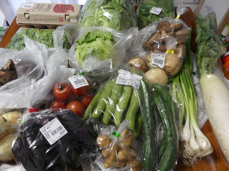 房総の野菜