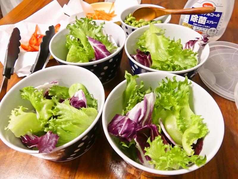 サラダ 作り置き