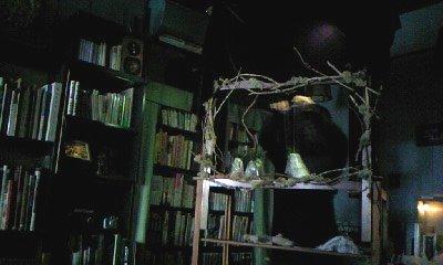 高円寺のcafeにて。これはまだ骨組みだけですが