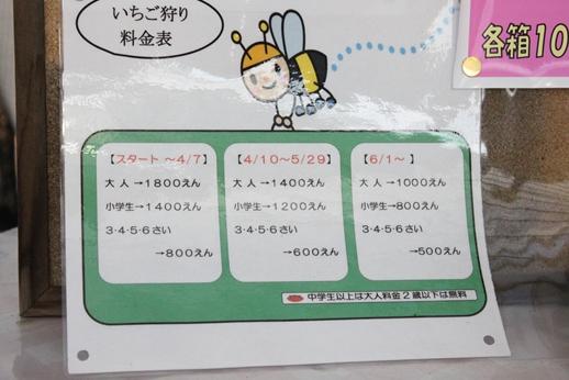 IMG_9236_R.JPG