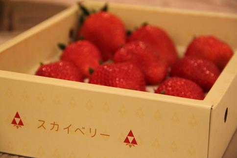 IMG_4676_R.JPG