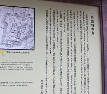 IMG_9736_R.JPG