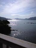 伯方・大島大橋からの海