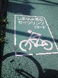 しまなみサイクリングロード